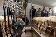 Работники на селькое хозяйство, Германия.