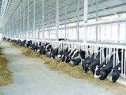 Работа в Германию в сферу сельскохозяйственной промышленности