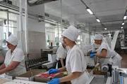Работники на пищевые мануфактуры - Германия.